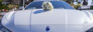 Dettaglio fiore su Maserati Bianca